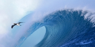 Barrel Time - Cloudbreak, Tavarua - Volcom Pro Fidji 2013