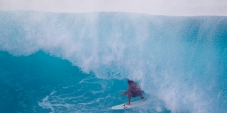 Pipeline, Hawaii, Dingo
